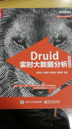 Druid实时大数据分析原理与实践 晒单图