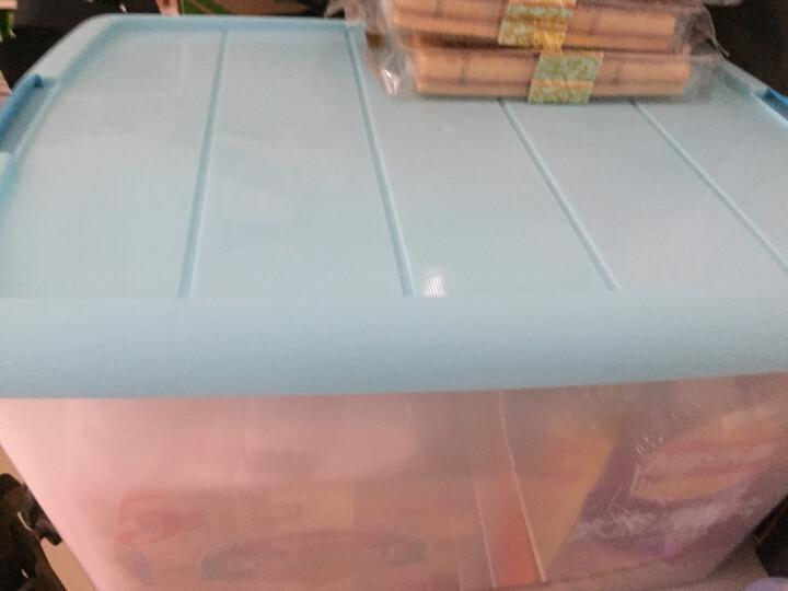 爱丽思IRIS 环保塑料整理收纳箱TB-54D 蓝色 50L 晒单图