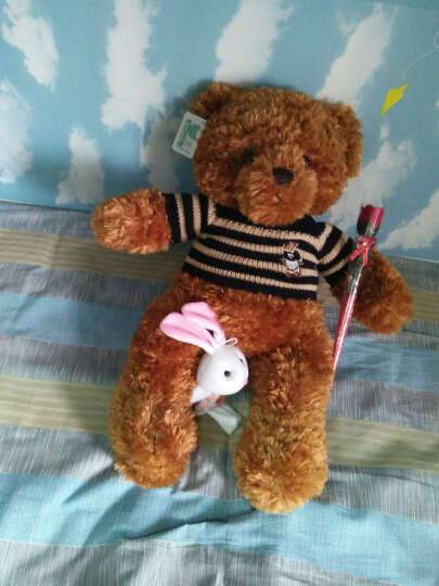 正版泰迪熊 毛绒玩具 大熊公仔可爱熊猫超大号布娃娃抱抱熊玩偶送女生生日礼物 棕色(小熊版配蓝色毛衣) 60cm(送毛绒挂件+送仿真玫瑰花) 晒单图