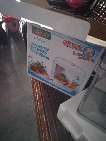 佳宝鱼缸 水族箱迷你小型金鱼缸桌面装饰造景 QR128裸缸标配(LED灯+泵) 晒单图