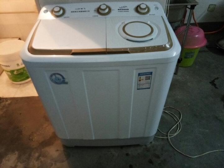 新飞(Frestec) 6 7 8 9公斤半自动双缸双桶大容量波轮家用带甩干洗衣机大家电 XPB90-X8006S 9公斤 晒单图