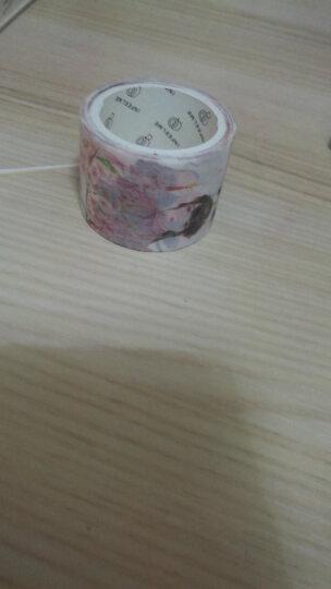 手账胶带日式DIY装饰手撕彩色和纸胶带 手账花纹少女手帐周边贴纸 胭脂红-桃夭 30mm 晒单图