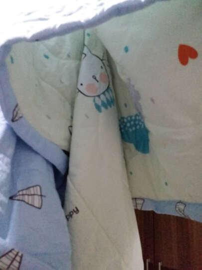 奥卡索 双面牛奶绒夹棉盖被子纯色双人被芯学生宿舍太空棉被空调被单人春秋被褥 纯棉被子被芯 蓝心童话 150*200cm 晒单图