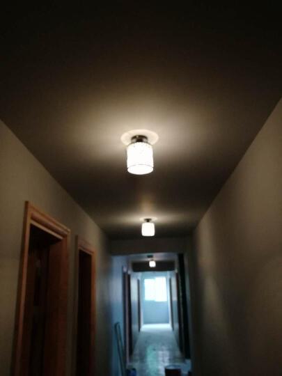 11.11优惠3件9折 吸顶灯客厅灯卧室灯过道灯走廊灯现代简约欧式玻璃灯罩铁艺灯 钻石款 送9w LED灯泡 晒单图