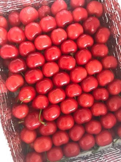 山东烟台美早大樱桃 车厘子 新鲜水果 24-26mm 1.5kg 晒单图