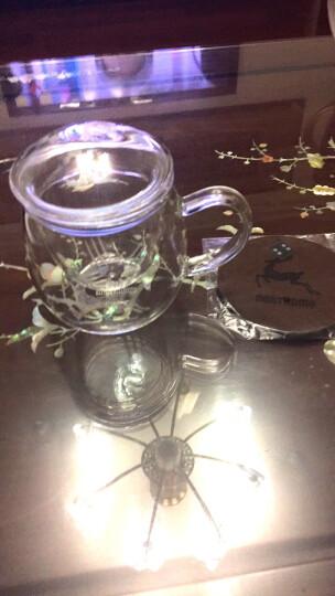 小北家【加厚】胖胖杯 雪花鹿 三件式泡茶杯耐热玻璃杯子水杯过滤内胆飘逸杯健康饮水办公茶杯 550ml-雪花鹿 晒单图