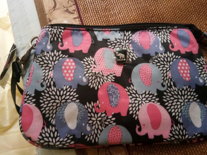 爱华仕(OIWAS)女包时尚钱包手拿包零钱包 OCQ1503小象花色 晒单图