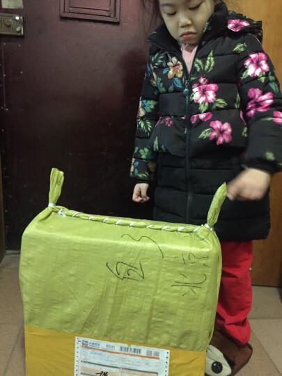 皇中皇 组合拼接防滑地垫浴室防滑垫厕所卫生间洗澡脚垫拼接地垫镂空地垫 PVC地垫 深蓝色 20*20cm/片(6片装) 晒单图