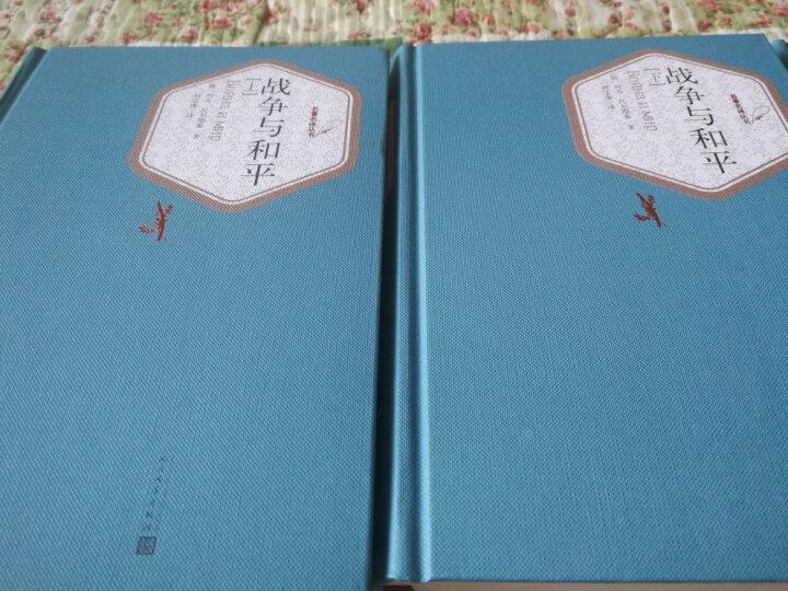 名著名译丛书:战争与和平(套装上下册) 晒单图
