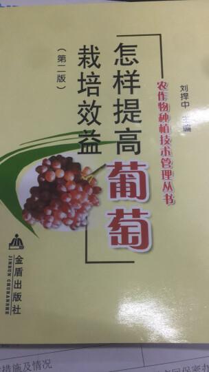 农作物种植技术管理丛书:怎样提高葡萄栽培效益(第2版) 晒单图