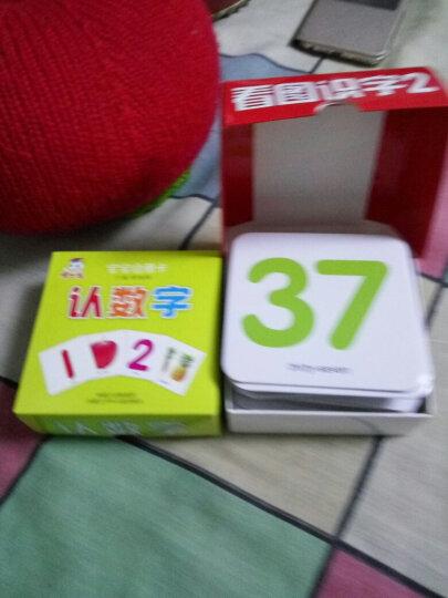 看图识字卡片全5盒 儿童早教卡宝宝启蒙学习卡汉语拼音 数字 识字拼音 幼儿园卡片撕不烂书籍 晒单图