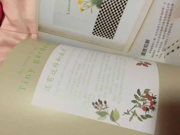 青木和子的唯美刺绣:憧憬中的庭院 晒单图