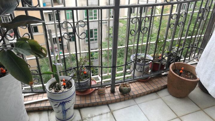 绿篱 自动浇花器大棚喷雾器种养花工具浇花喷头家庭自动浇水器滴灌器喷淋花滴洒水滴灌智能系统雾化设备 双出接头 晒单图