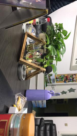 时光巴士 创意花瓶玻璃摆件办公桌装饰品家居客厅房间卧室书柜摆设 三灯泡款水培瓶 晒单图