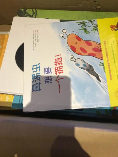 阳光宝贝 全脑训练之右脑训练(套装全3册) 晒单图