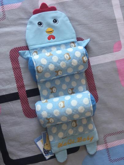 康维佳 婴儿枕头多功能新生儿童枕头荞麦壳枕头 宝宝枕头婴儿定型枕预防头偏四季 老虎蓝色 晒单图