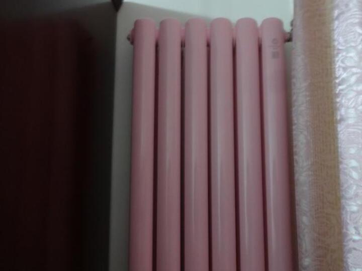 狮王 暖气片 钢制 双柱50/60片头家用水暖散热器 其他定制要求咨询客服 晒单图