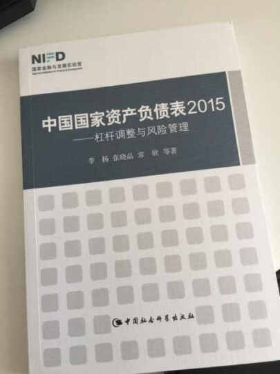 中国国家资产负债表2015:杠杆调整与风险管理 晒单图