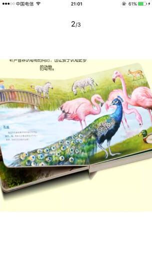 德国高端定制·认知启蒙发声绘本 动物园 6种动物真实声音 晒单图