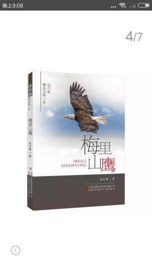 动物小说大王沈石溪·品藏书系:黑天鹅紫水晶 晒单图