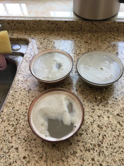 九阳(Joyoung)豆浆机家用 多功能破壁免滤果汁机 全自动智能预约辅食机 DJ13E-C5 晒单图