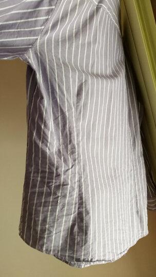 UCLA长袖衬衫 2018秋冬新品商务休闲牛津纺条纹合身男衬衣 紫色/U XL 晒单图