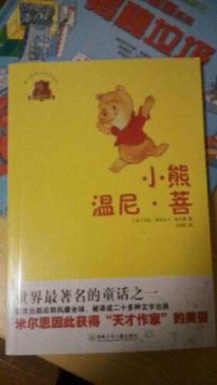 全球儿童文学典藏书系(共3本)小熊温尼 菩  豆蔻镇的居民和强盗 草原上的小木屋 儿童文学 晒单图