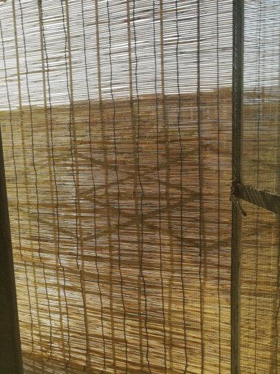 鑫琪 三木园艺  大棚芦苇帘竹帘窗帘卷帘遮阳窗帘遮光窗帘隔断草帘子定做装饰竹卷帘 原色帘宽1.3米宽2米高 晒单图