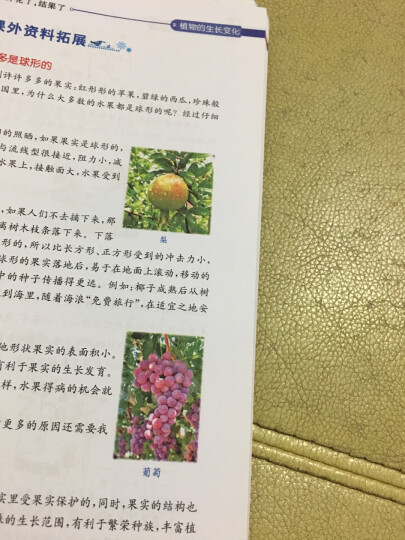 小学英语私家课:自然拼读阅读训练 晒单图