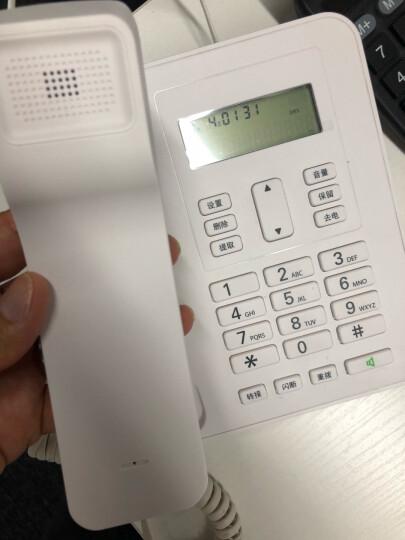 摩托罗拉(Motorola)CT310C固定有绳电话机座机来电显示免电池大屏幕欧式时尚办公商务家用有线座机(白色) 晒单图