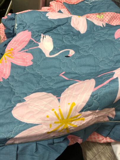 金鸣家纺韩版纯棉夹棉加厚床裙四件套1.2 1.5 1.8 米床上用品~ 韩式清新 200x220cm床配被套220x240cm 晒单图