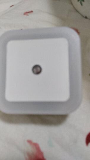【天黑自动亮 天亮自动灭】光控感应小夜灯 LED插电插座起夜灯婴儿宝宝床头灯 经典款 晒单图