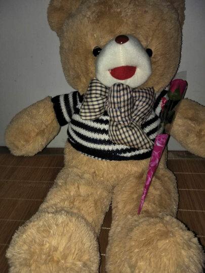 魔法龙 新款毛衣泰迪熊公仔抱枕毛绒玩具熊布娃娃玩偶玩具熊大号抱抱熊大熊猫生日礼物女生 蓝白条纹毛衣-开心泰迪熊 1.2米 晒单图
