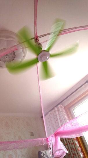 中联(ZOLEE)电风扇小吊扇小型迷你小风扇床上用风扇家用蚊帐扇学生宿舍用电风扇5叶大风力微风吊扇 标品+2米国标线 晒单图