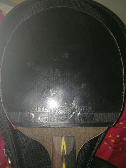 天津友谊729 乒乓球拍胶皮乒乓球底板胶皮 套胶 729-5  天翼 反胶套胶 快攻弧圈型 729-5黑色1片 晒单图