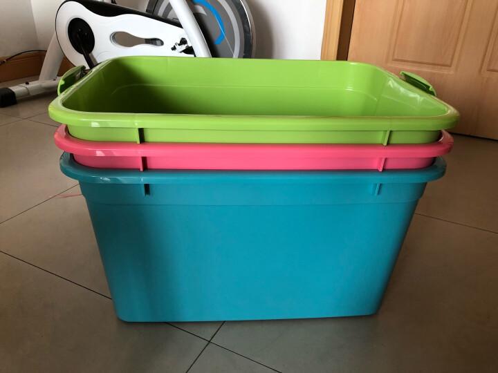 禧天龙Citylong 52L大号炫彩蒂梵混色收纳箱环保塑料储物箱家用整理箱3个装 6131 晒单图