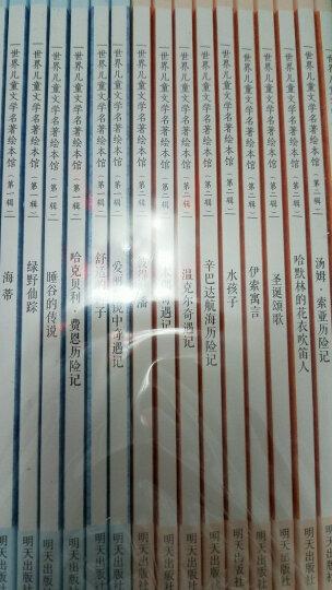 世界儿童文学名著绘本馆(一二辑合辑 套装共20册) 晒单图