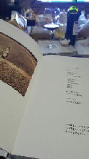又寂寞又美好[繁体] 台湾原版漫画绘本 几米 正版书籍 (精装) 晒单图