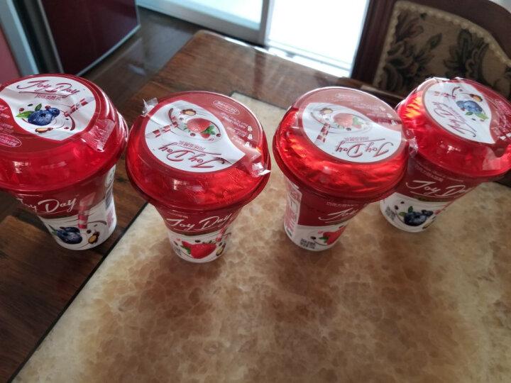 伊利 Joy Day 风味发酵乳 巧克力豆+菠萝+椰子酸奶酸牛奶 190g*1 晒单图