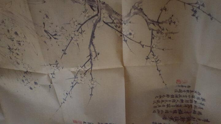 历代书画名作手工宣纸高仿真经典系列:恽寿平(清)·双清图 晒单图