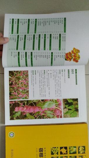 园林植物图鉴丛书:一二年生草本花卉 晒单图