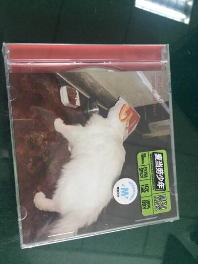 街道杀死奇怪的动物《麦当劳少年》CD 摩登天空发行 晒单图