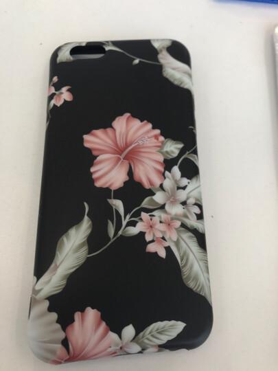 丹非 苹果iPhone7手机壳6/6s/7/8plus女士复古玫瑰花硅胶保护套全包软壳 山茶 7plus/8plus 晒单图