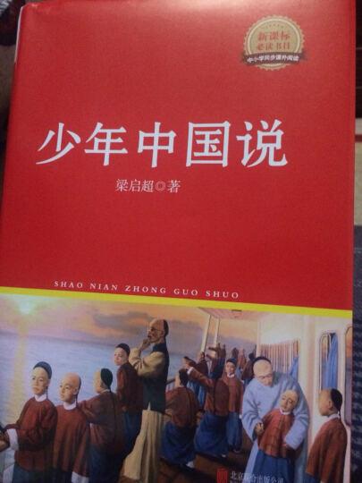少年中国说/新课标必读丛书红皮系列) 晒单图