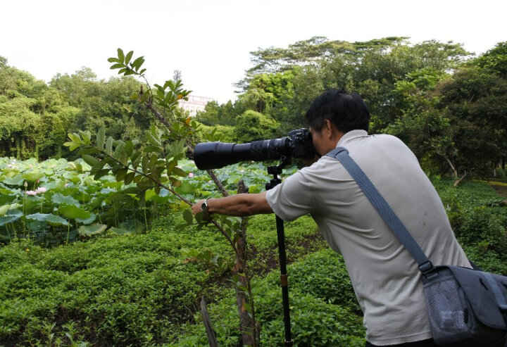 尼康(Nikon)J5 微单相机 尼克尔 VR防抖 J5+1 10-30mm f/3.5-5.6 PD镜头 白色(可更换镜头 4K视频录制) 晒单图