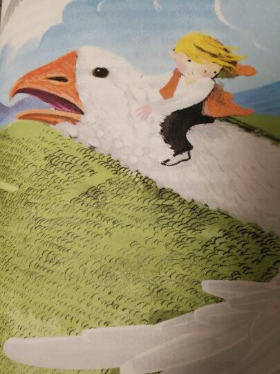 骑鹅旅行记——打动孩子心灵的世界经典童话 晒单图