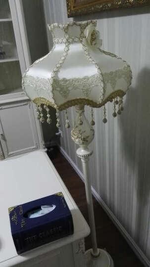wanlang欧式客厅卧室床头落地灯创意时尚简约装饰温馨灯饰5966L 晒单图