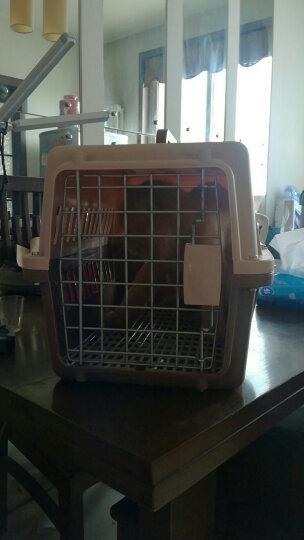 憨憨乐园 宠物航空箱外出箱子猫包托运箱旅行箱运输猫笼子便携咖啡色中号+狗狗饮水器蓝色500ml套装 晒单图