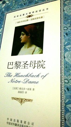 双语名著无障碍阅读丛书:巴黎圣母院 晒单图