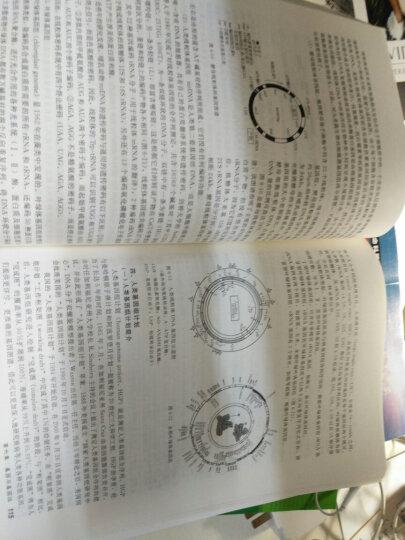 """普通高等教育""""十一五""""规划教材:现代分子生物学与基因工程 晒单图"""